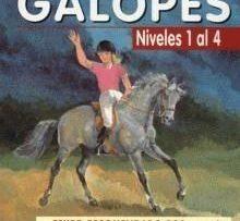 Curso-de-equitacion-GALOPE-(Niveles-1-al-4)