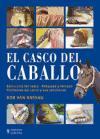 El-casco-del-caballo-i0n1493034
