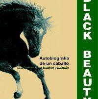 SEWELL-Black_Beauty
