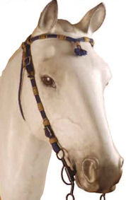 Umbria-equitazione-Cabezada-para-pony-en-cuerda--negro
